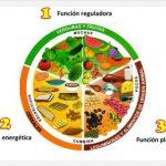 ¿Qué se entiende por alimentación saludable?