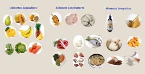 Alimentos Reguladores, Energéticos Constructores